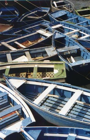 Barcas.jpg