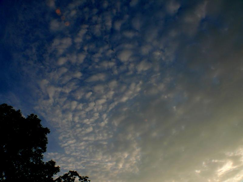 206-Sunset_Clouds_in_Summer.jpg