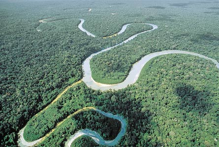 amazonas1.jpg