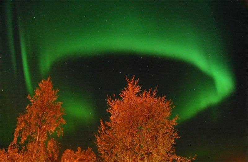 aurora_lindersen2_full.jpg
