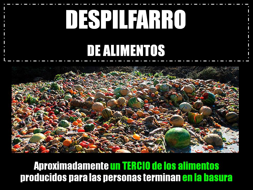 Despilfarro_2.jpg