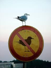 prohibir.jpg